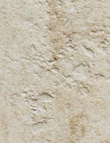 Neolitica-Giallo-Australe-2
